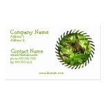 Wild Coati Business Card