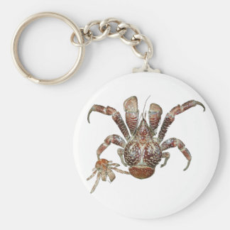 Wild Coconut Crab from Carribean Basic Round Button Keychain