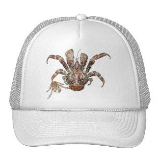 Wild Coconut Crab from Carribean Trucker Hats