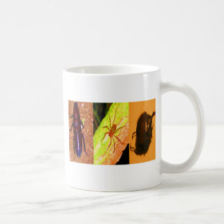 Wild Costarica - Spiders, Cockroaches and Insects Classic White Coffee Mug