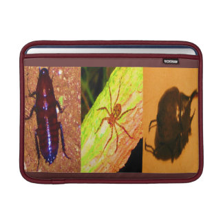 Wild Costarica - Spiders, Cockroaches and Insects MacBook Air Sleeve