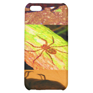 Wild Costarica - Spiders, Cockroaches and Insects iPhone 5C Covers