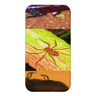 Wild Costarica - Spiders, Cockroaches and Insects iPhone 4 Case