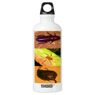 Wild Costarica - Spiders, Cockroaches and Insects SIGG Traveler 0.6L Water Bottle