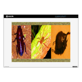 Wild Costarica - Spiders, Cockroaches and Insects Laptop Skin