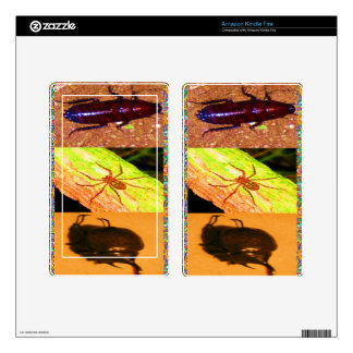 Wild Costarica - Spiders, Cockroaches and Insects Decals For Kindle Fire