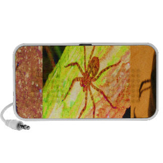Wild Costarica - Spiders, Cockroaches and Insects Travelling Speaker