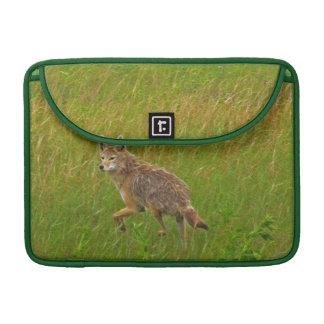 Wild Coyote Animal Wildlife MacBook Sleeves MacBook Pro Sleeves