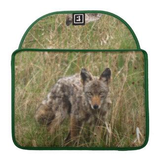 Wild Coyote II Animal Wildlife MacBook Sleeves MacBook Pro Sleeves