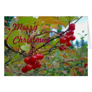 Wild Cranberries Greeting Card