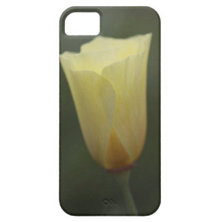 Wild Cream Poppy iPhone 5 Cases