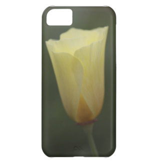 Wild Cream Poppy iPhone 5C Cases