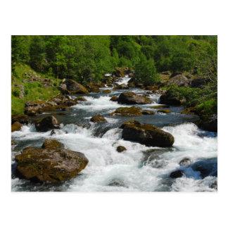 Wild Creek Postcard