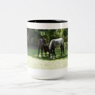 Wild Cumberland 2 Two-Tone Coffee Mug