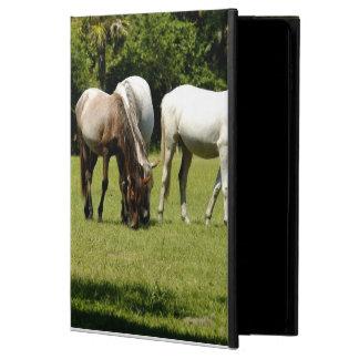 Wild Cumberland 3 Powis iPad Air 2 Case