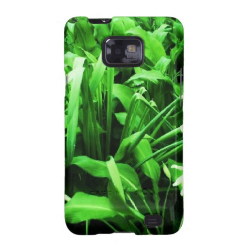 Wild daffodils and dark green leaves. galaxy SII cover