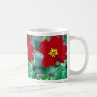 Wild Dahlia, Machu Picchu flowers Classic White Coffee Mug