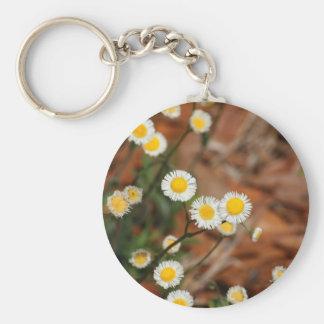 Wild Daisies Basic Round Button Keychain