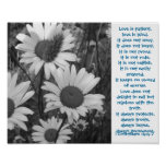 Wild Daisies Love Poster
