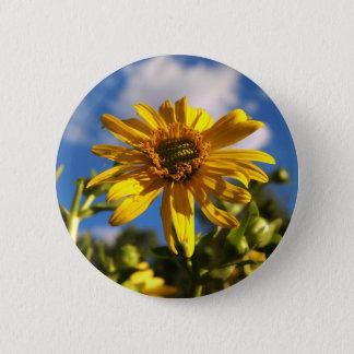Wild Daisy Flower Photo Pinback Button