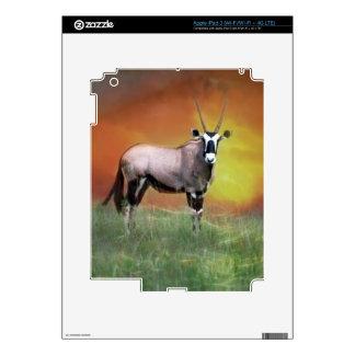 Wild deer at sunset iPad 3 decal