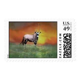 Wild deer at sunset stamp