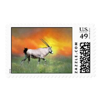 Wild deer at sunset postage stamp