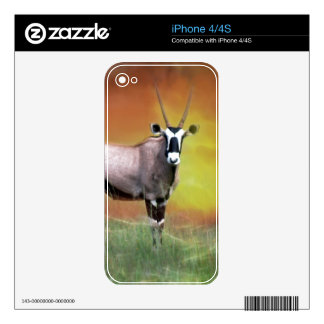 Wild deer at sunset decals for iPhone 4S