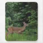 Wild Deer Entering Forest Wildlife Photo Mousepad