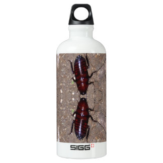 Wild Delicacy Cuisine - Science, Nature n Insects Aluminum Water Bottle
