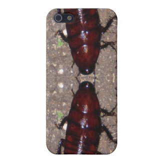 Wild Delicacy Cuisine - Science, Nature n Insects Case For iPhone SE/5/5s