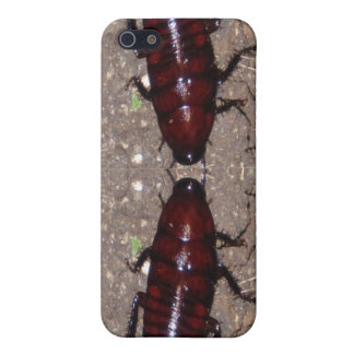 Wild Delicacy Cuisine - Science, Nature n Insects Cover For iPhone SE/5/5s