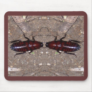 Wild Delicacy Cuisine - Science, Nature n Insects Mouse Pad