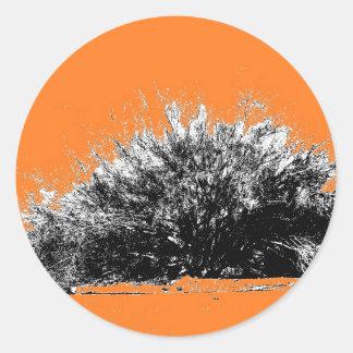 Wild Desert Shrub with Orange Classic Round Sticker