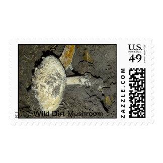 Wild Dirt Mushrooms Postage Stamps