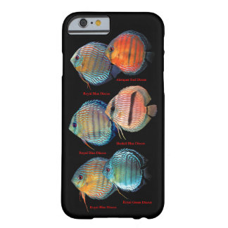 Wild Discus Fish Barely There iPhone 6 Case