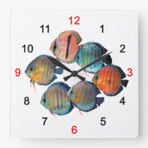 Wild Discusfish Square Wall Clock