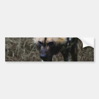 Wild Dog Bumper Sticker