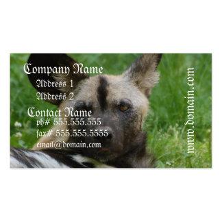 Wild Dog Business Card