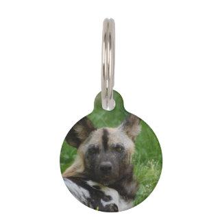Wild Dog Pet Nametag