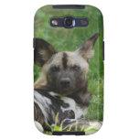 Wild Dog  Samsung Galaxy Case Galaxy S3 Covers