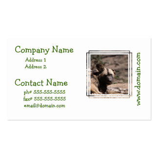 Wild Dog with Floppy Ear Business Card Template