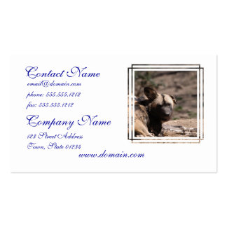 Wild Dog with Floppy Ear Business Card Templates