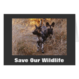 Wild Dogs Save Our Wildlife Greeting Card