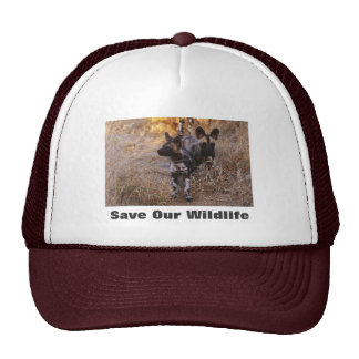 Wild Dogs Save Our Wildlife Hat