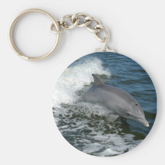 Wild Dolphin Keychain