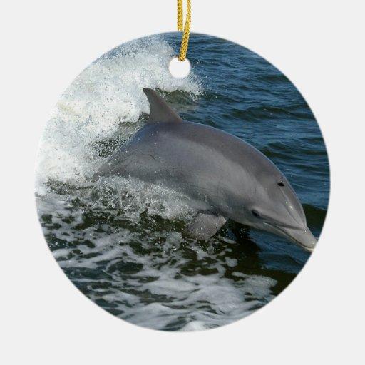 Wild Dolphin Ornament