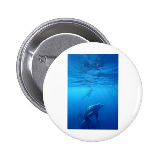 Wild Dolphins Pinback Button