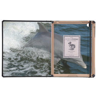 Wild Dolphins Cases For iPad