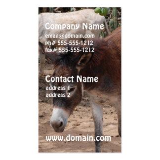 Wild Donkeys Business Card Template